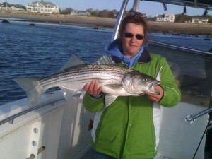 Wells Maine Striper Fishing Charter, Wells Maine Fishing Trip