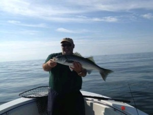 Wells Maine Striper Fishing, Striped Bass Fishing Charter, Breton's Charters, Fishing and Fly Fishing Charters for Stripers and Bluefish